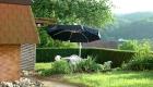 Bilder Haus und Umgebung 2